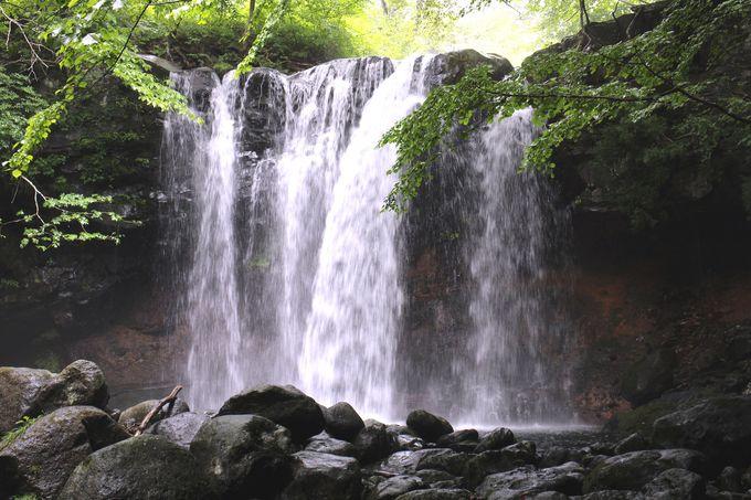 森の中に囲まれた乙女の滝は神秘的な力を秘めたパワースポット!?