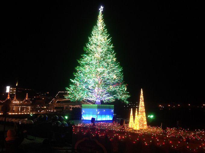 海に浮かぶBIGツリーはカナダから届いた「幸せを呼ぶもみの木」だった