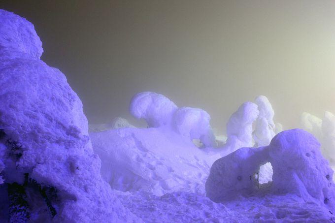 8.蔵王の樹氷(アイスモンスター)/山形県