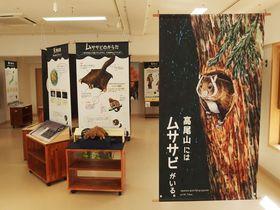 """高尾ビジターセンターで新しい""""TAKAO""""を発見!高尾山の自然について学ぼう"""
