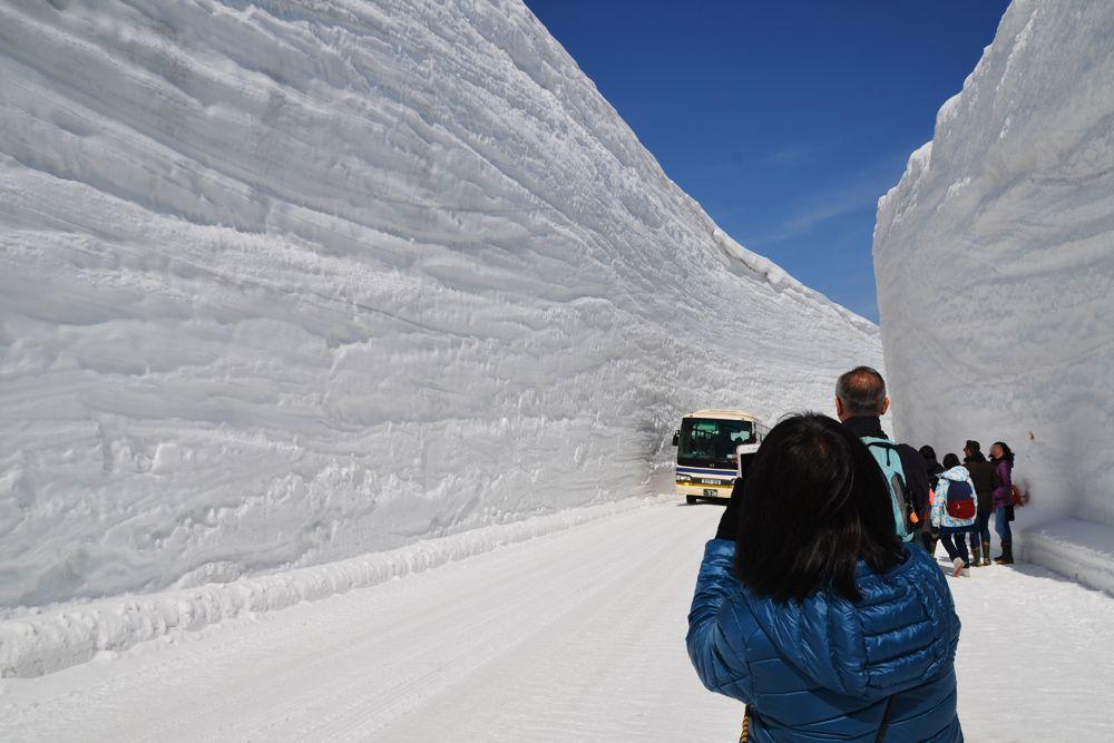 立山の春を告げる風物詩、「雪の大谷」を体感できる立山・天空ロード