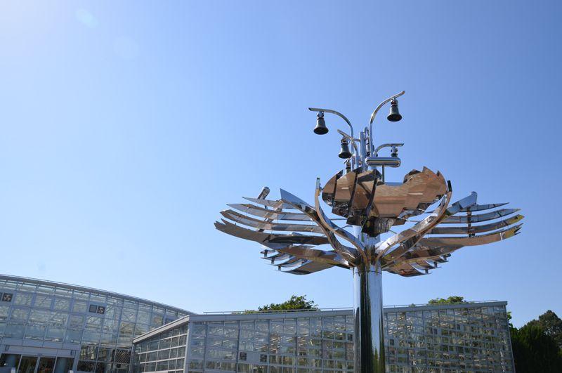 ばら園だけじゃない、神代植物公園の魅力