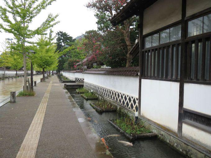 武家屋敷の塀がならび、鯉が泳ぐ殿町通りには小雨が似合う。。。