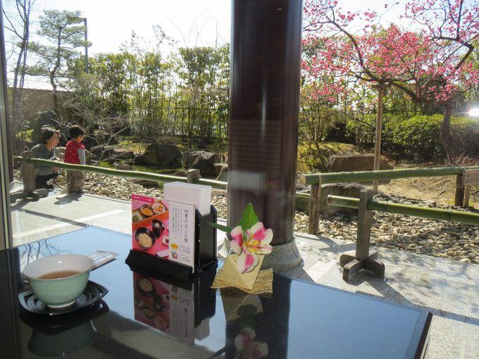 庭自慢の甘味処「小倉山荘カフェ」