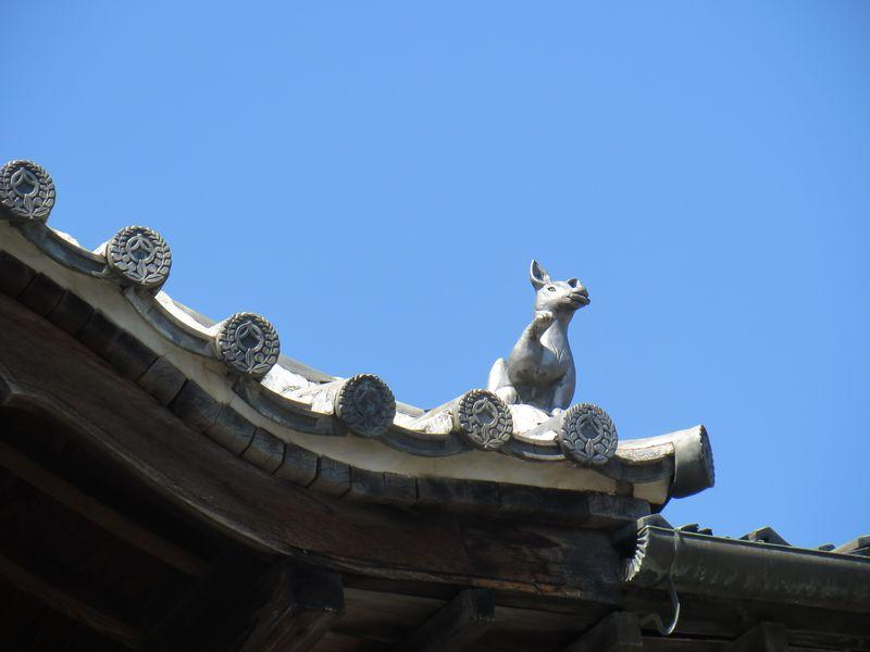 屋根では招き狐が待っている☆