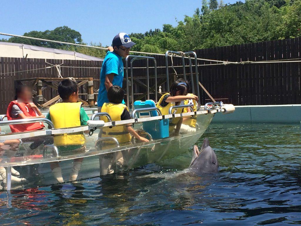 山頂に水族館?源平合戦の地でイルカにタッチ!高松「新屋島水族館」