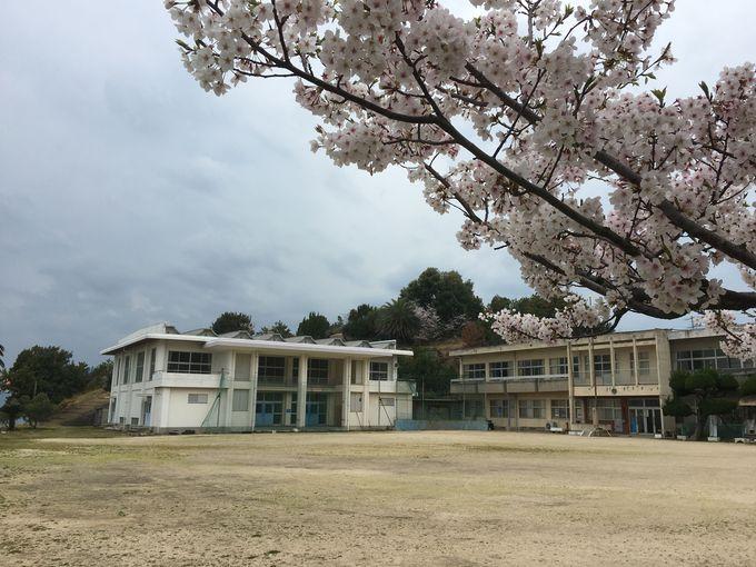 八日目の蝉のロケ地「旧戸形小学校」は目の前が海