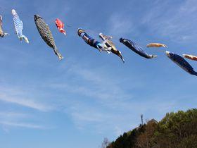 香川県で癒しのスポット見〜つけた!さぬき市「門入の郷」