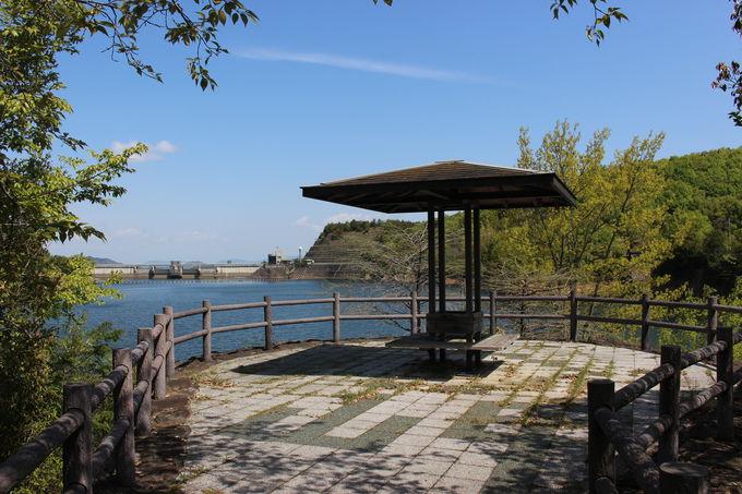 木々と湖と公園と…癒され要素が満載