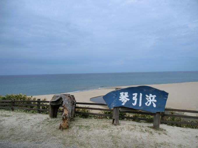 まずは琴引浜の鳴き砂を鳴らして歩こう
