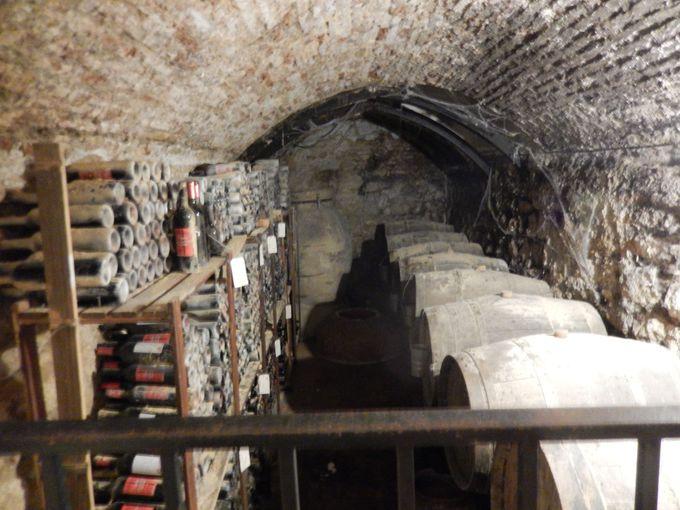 酒好きには必見!ワイン博物館(CENTRO DE INTERPRETACION DEL VINO)