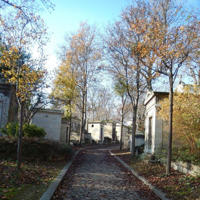 広い墓地は、迷路のように入り組んだ幻想の別世界