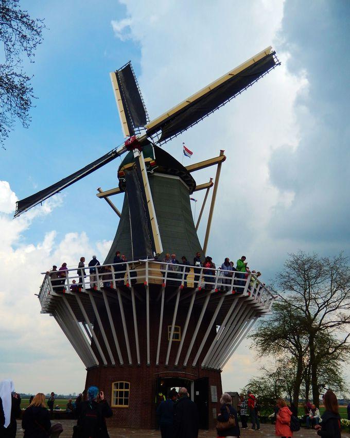 オランダらしさを実感できるお土産ショップと可愛い風車!