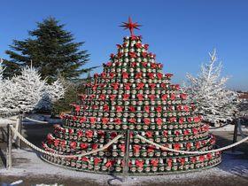 恋人と行きたい!ザグレブの欧州ベスト・クリスマスマーケット