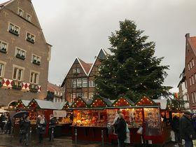 ドイツ中世の街ミュンスター!可愛らしい穴場クリスマスマーケット