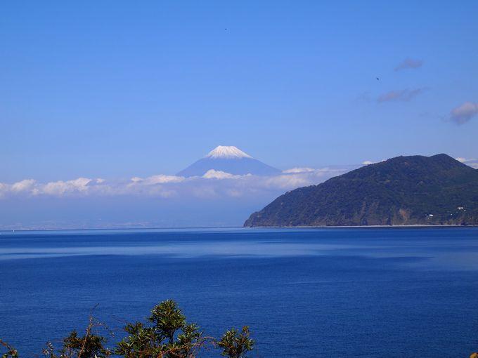 車で5分、絶景の富士に出会う
