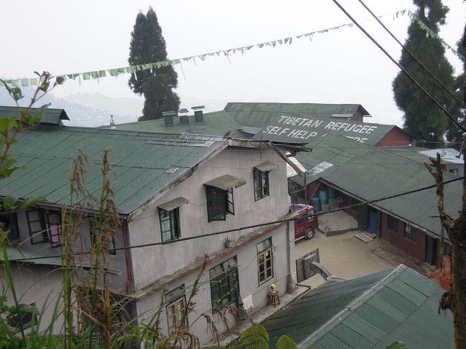 チベット難民センター
