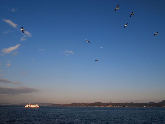 東京湾横断の船旅へ