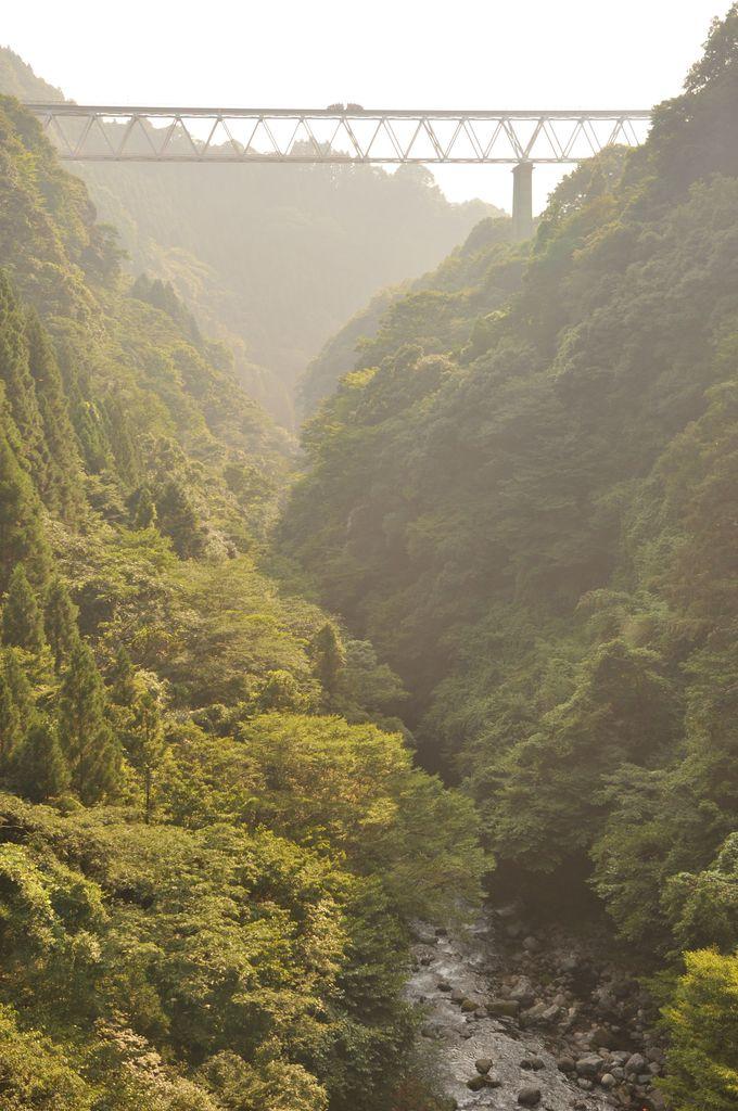 いつか乗りたい!高千穂「スーパーカート」から望む絶景