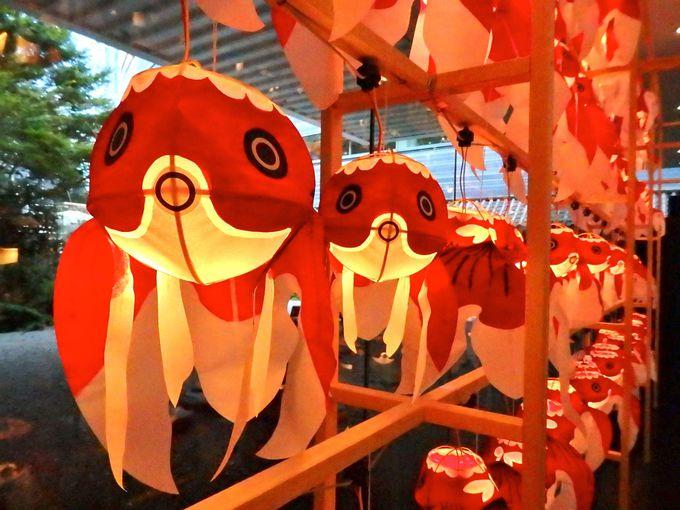 表情がかわいい金魚ちょうちん祭り
