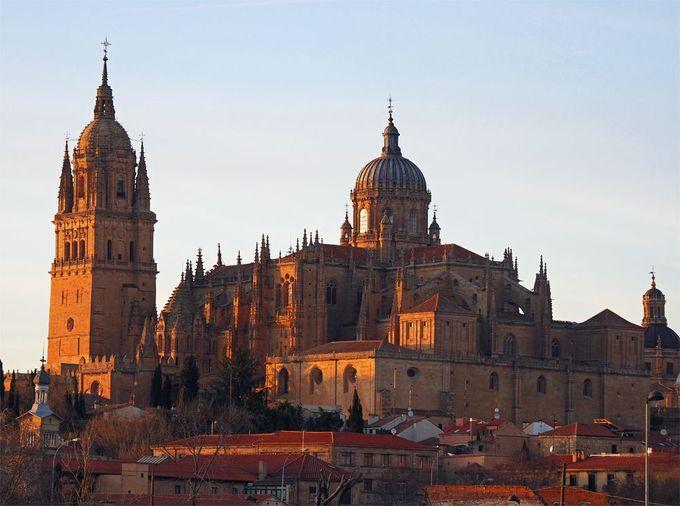 大聖堂は比類なき美しさ!