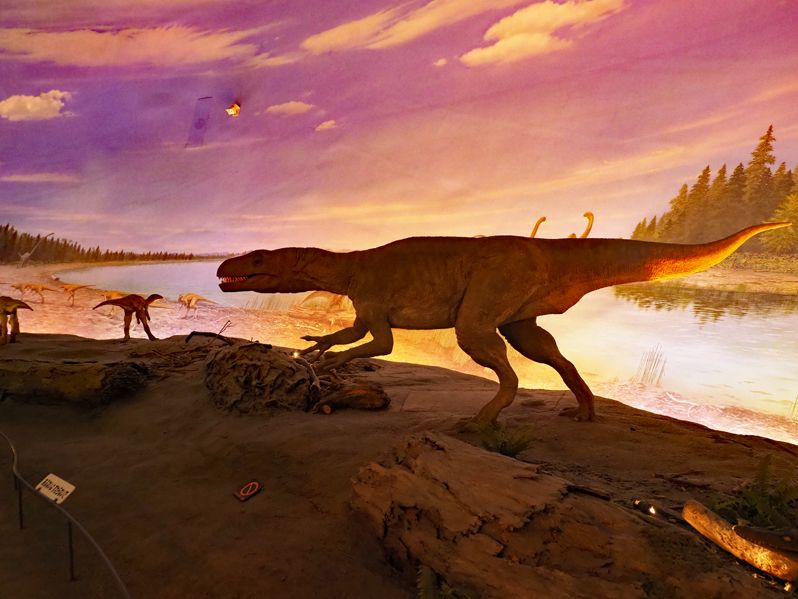 ボーンベッドから「恐竜の世界」ジオラマへ