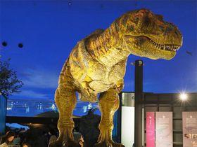 福井県立恐竜博物館と周辺のおすすめ観光スポット4選 歴史にグルメも!