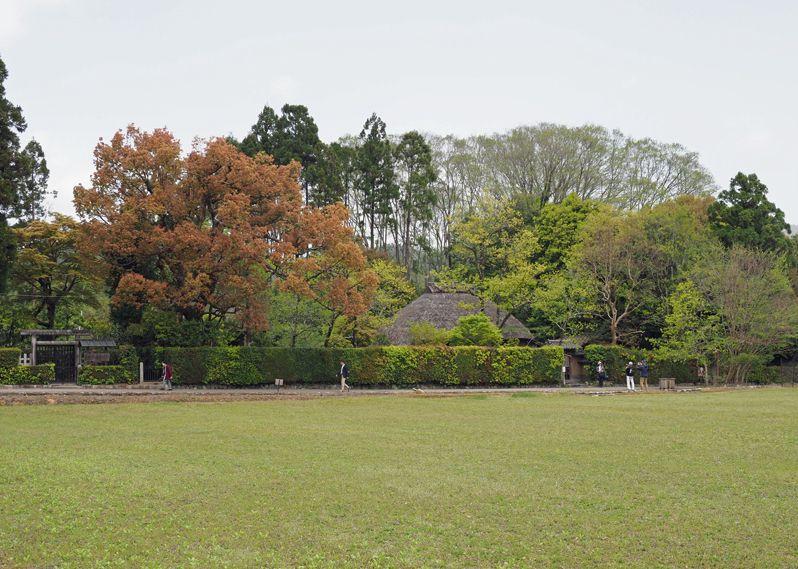 嵐山から京都観光をはじめる