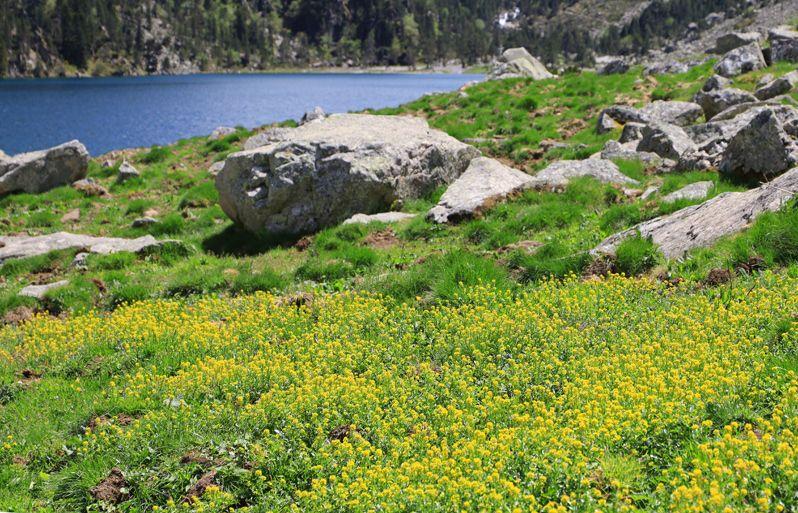 ゴーブ湖の絶景は感動的だ!