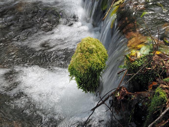 姫川源流自然探勝園
