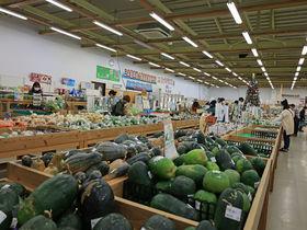 石垣島「ゆらてぃく市場」で八重山ならではの食材をゲットしよう!