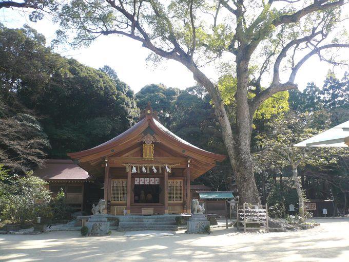 良縁を求め、特に女性やカップルに人気の竈門神社