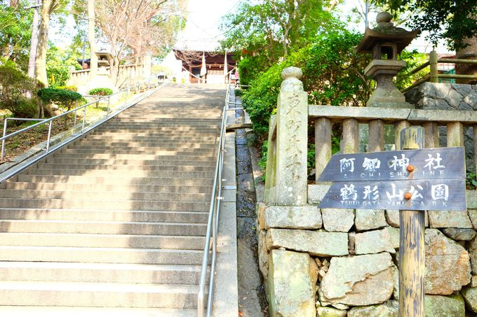 約180段の階段を登り切ろう!