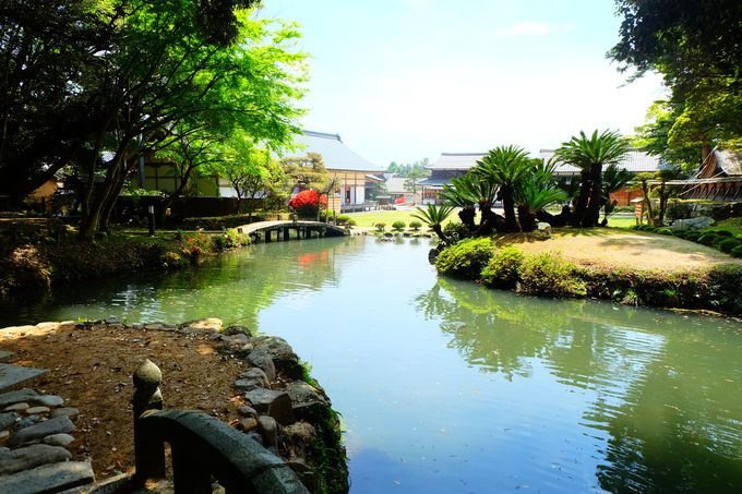 緑に囲まれたお庭と池をぐるりと散策
