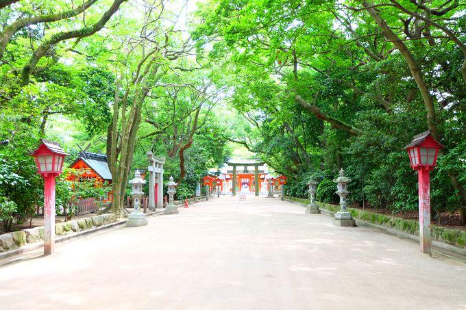 全国にある住吉神社で一番古い神社
