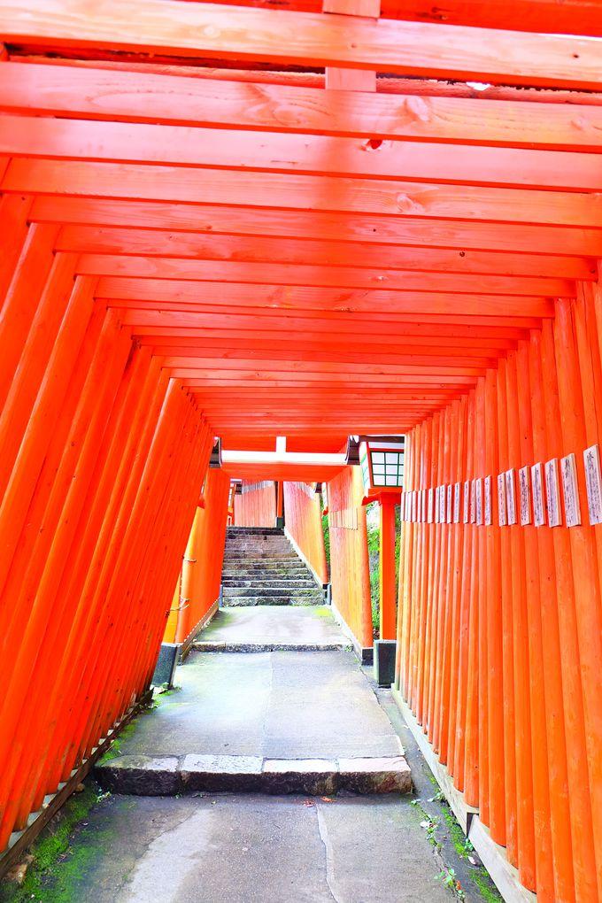 朱塗りの見事な鳥居トンネル
