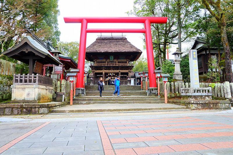 楼門と真っ赤な鳥居のコントラストが新鮮