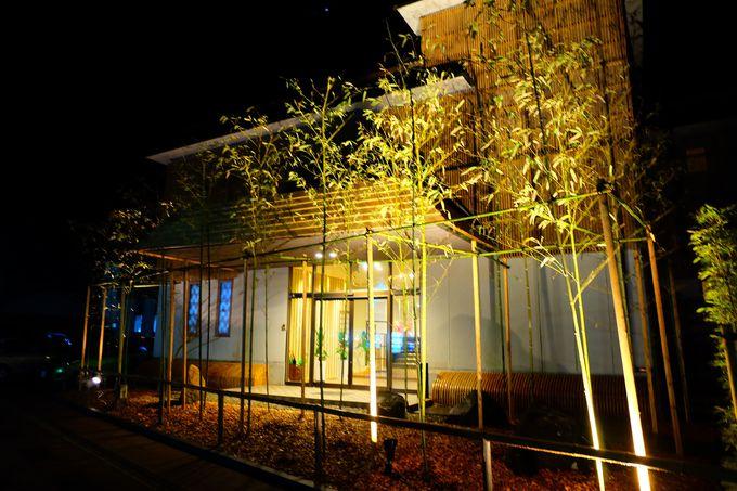 竹と光が織りなす幻想的な夜のエントランス