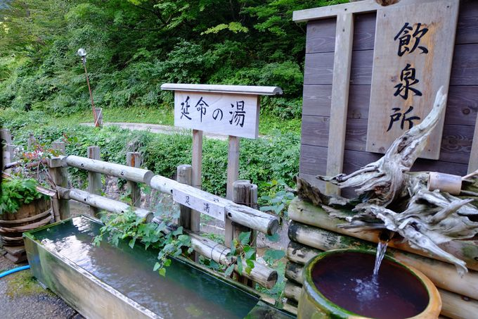 旅館の玄関前には飲泉場と足湯も。