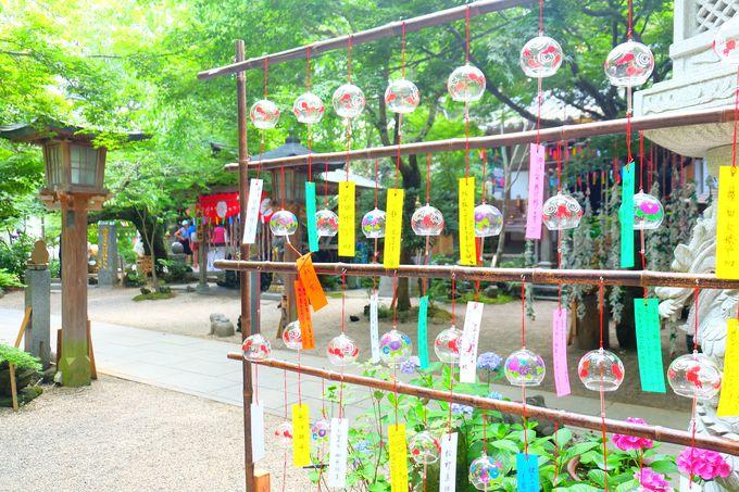 毎年7月〜9月は風鈴祭り開催