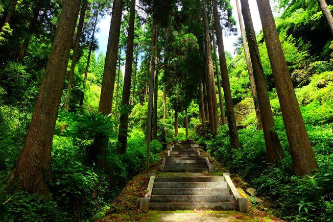 10.室山熊野神社/福岡県