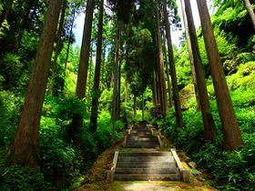 福岡・星野村の高台にそびえる静寂な「室山熊野神社」は心して参ろう