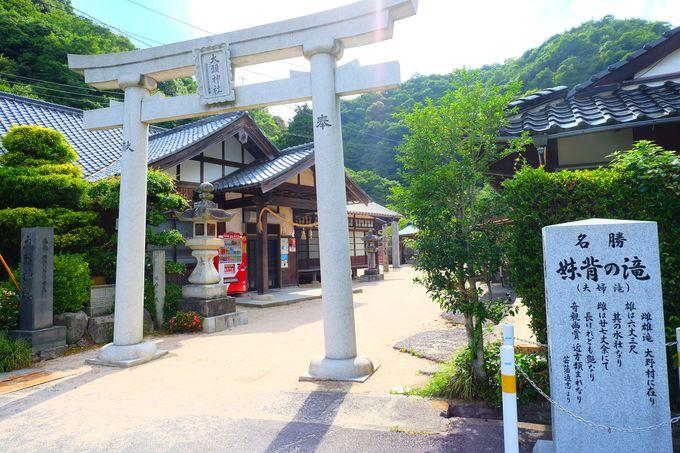 創始は603年の歴史ある神社