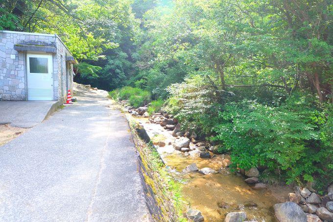 雄滝に続く四季を感じる遊歩道