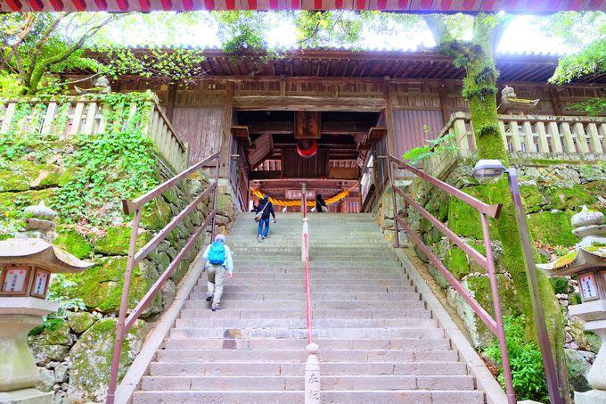 隋神門を抜けると本殿目指してさらに階段