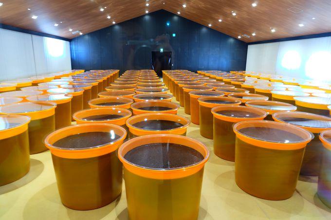 「HAKKOホール」では実際の発酵過程も見学