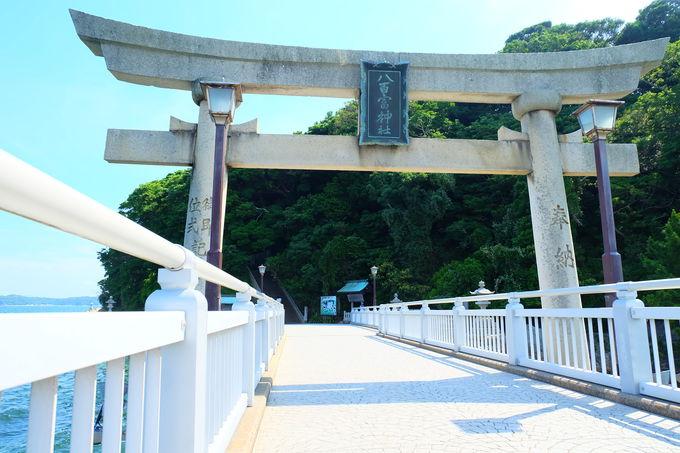 まっすぐ伸びた竹島橋と竹島を一望
