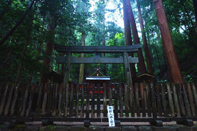 室生龍穴神社は神秘的すぎる聖域!