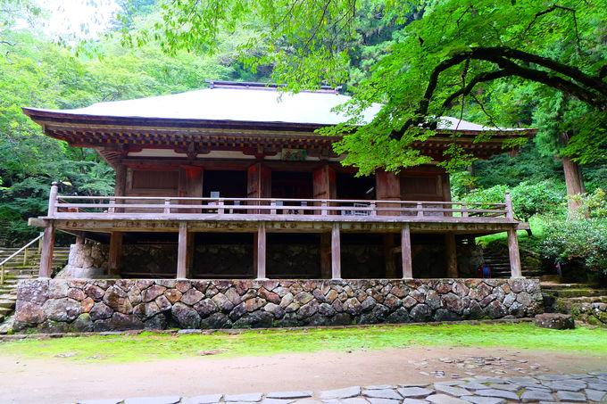 五重塔・金堂・本堂と国宝揃いの仏像を安置