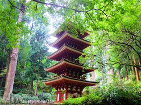 """国宝が建ち並ぶ""""女人高野""""と称される美しい古寺・奈良「室生寺」"""